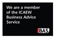Business Advice Service